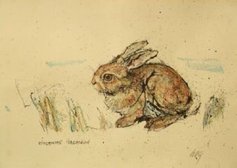 Fritz Rudolf  Hug; Young Rabbit 1960's